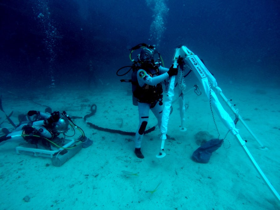 _images/survival-neemo-lesa.jpg
